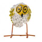 Seedpod Owl